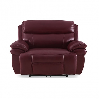 Boston Snuggle Power Recliner Comfort Plus
